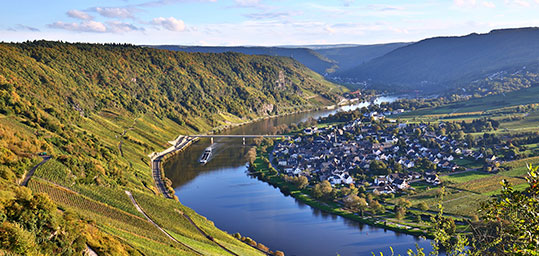 Moselle River Cruises