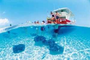 Grand Caymens is a popular snorkleing and scuba diving desitination in the Caribbean.