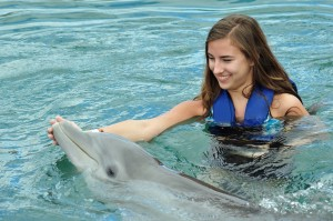 swim with dolphins 2