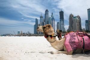 Asia cruise to Dubai