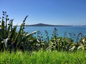 places to visit near Auckland