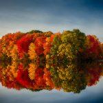 Fall Foliage 2017 Cruises