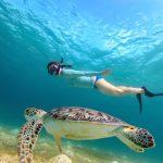 best snorkeling in caribbean
