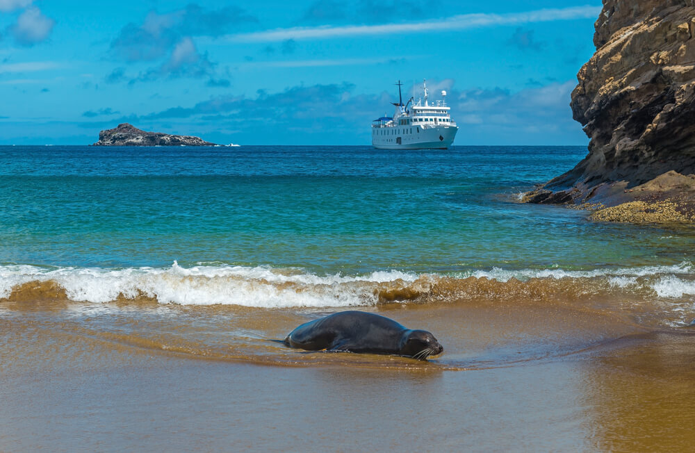 south america cruises