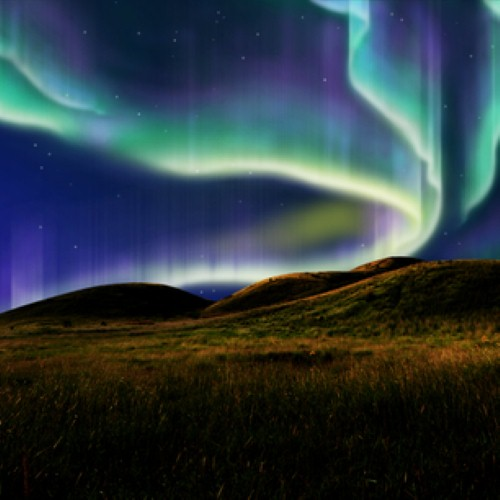 See Northern Lights In Alaska